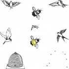 illustrations of Birds and Bees