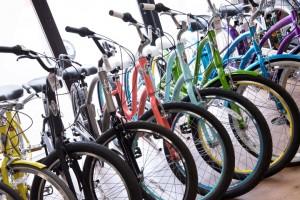 line of bikes